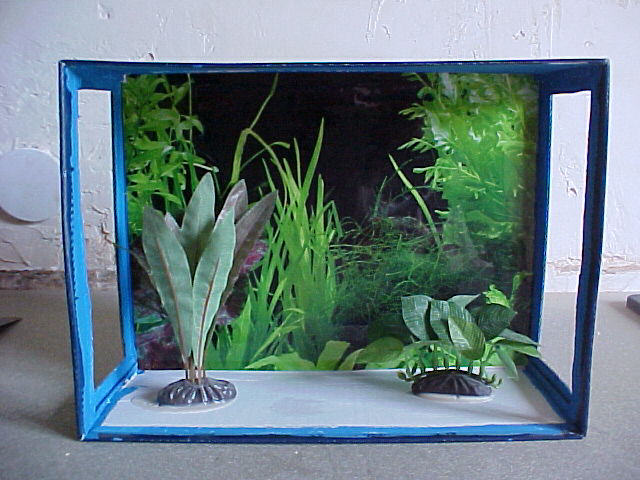 aquarium en carton wy67 jornalagora. Black Bedroom Furniture Sets. Home Design Ideas